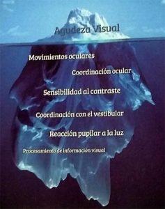 Iceberg de ambliopía. Pilar Vergara.